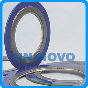 Spiral wound gasket with outer ring