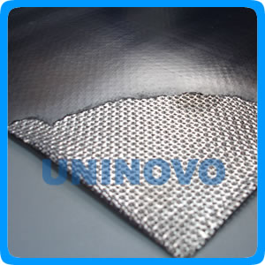 Expanded graphite sheet Reinforced tanged metal